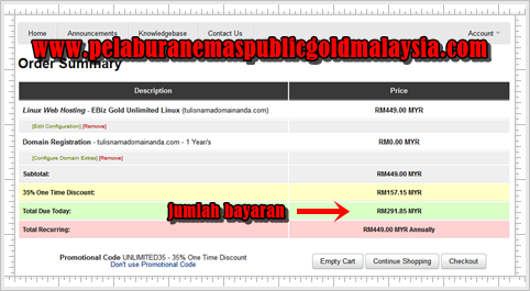 bayaran hosting dan domain